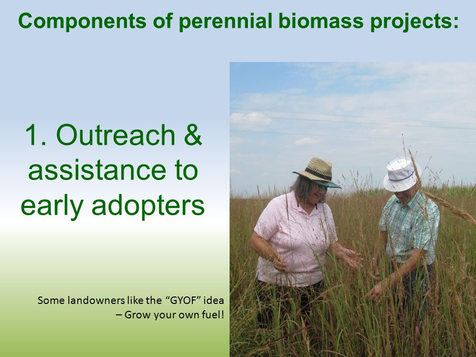 Components of perennial biomass projects: 1.