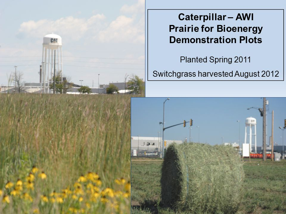Caterpillar – AWI Prairie for Bioenergy Demonstration Plots Planted Spring 2011 Switchgrass harvested August 2012