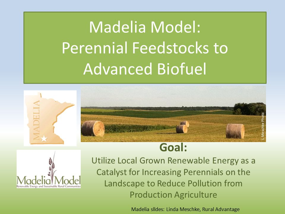 Madelia Model: Perennial Feedstocks to Advanced Biofuel Goal: Utilize Local Grown Renewable Energy as a Catalyst for Increasing Perennials on the Landscape to Reduce Pollution from Production Agriculture L Meschke Photo Madelia slldes: Linda Meschke, Rural Advantage