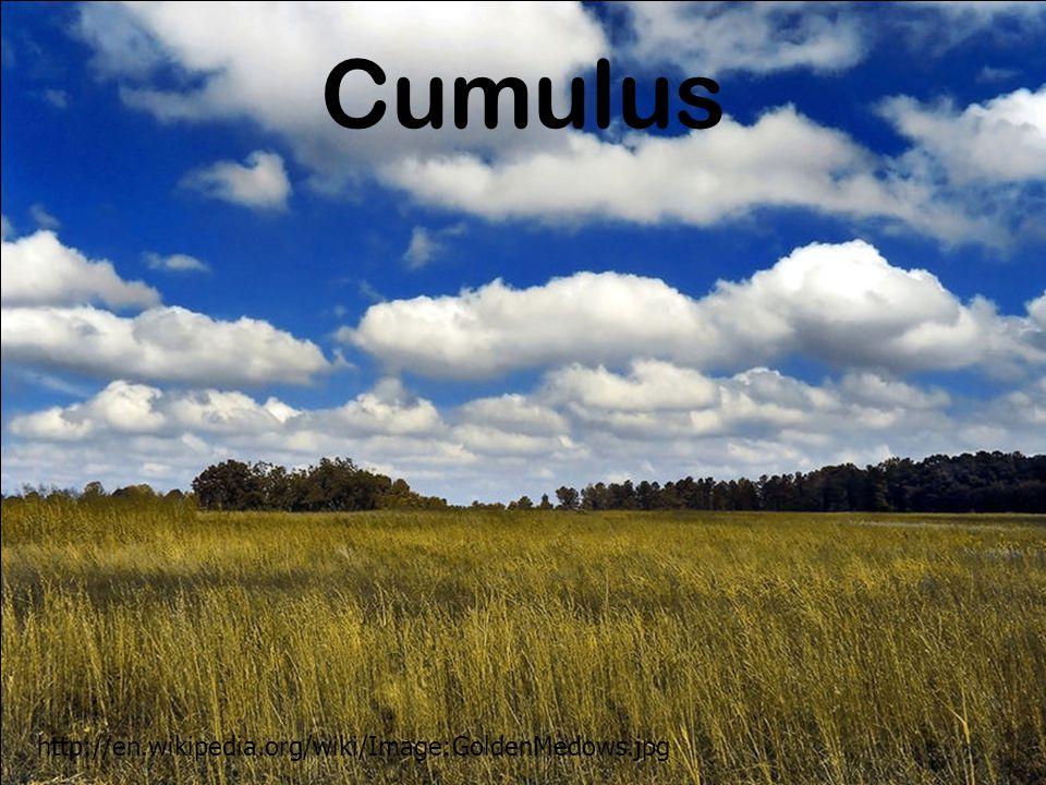 Cumulus http://en.wikipedia.org/wiki/Image:GoldenMedows.jpg
