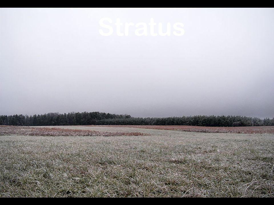 Stratus http://en.wikipedia.org/wiki/Image:FrozenField-Stratus.jpg