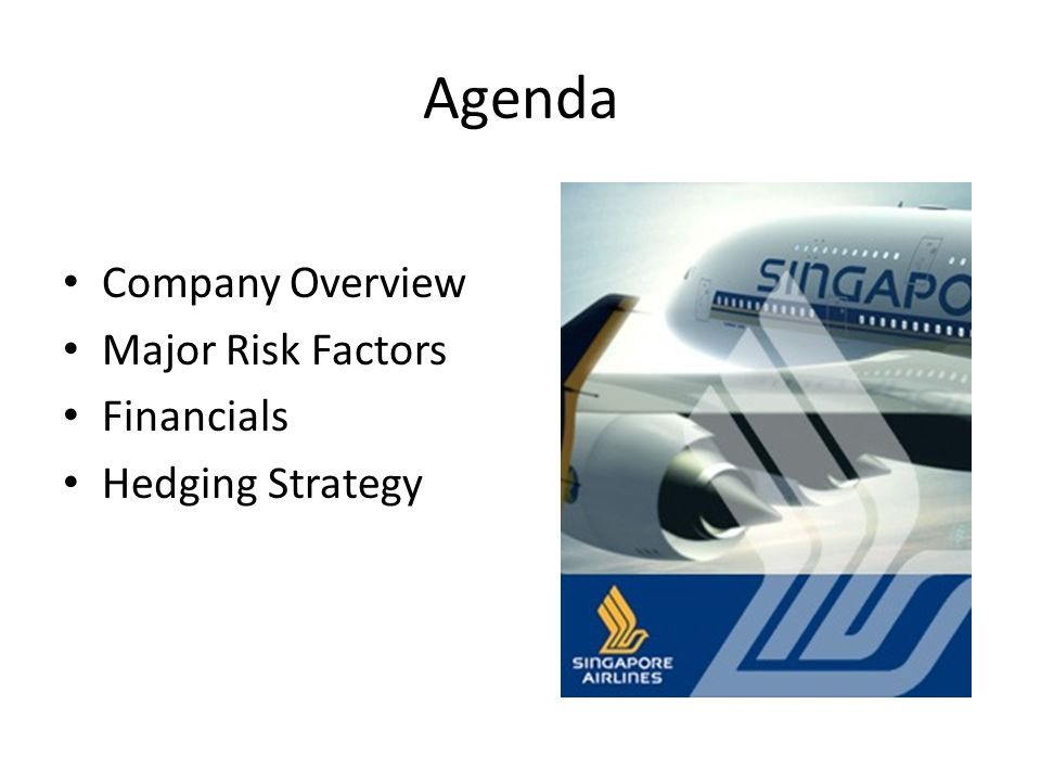Agenda Company Overview Major Risk Factors Financials Hedging Strategy