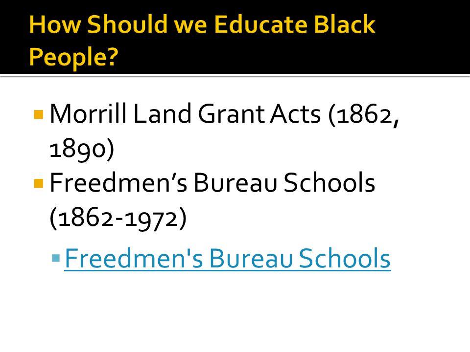  Morrill Land Grant Acts (1862, 1890)  Freedmen's Bureau Schools (1862-1972)  Freedmen's Bureau Schools Freedmen's Bureau Schools