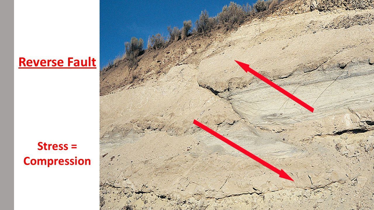 Reverse Fault Example – Collision Zones Bam, Iran 2003 Earthquakes in Iran and neighboring regions (e.g., Turkey and Afghanistan) are closely connected to their position within the active Alpine-Himalayan belt near the convergence of the Arabian and Eurasian plate.