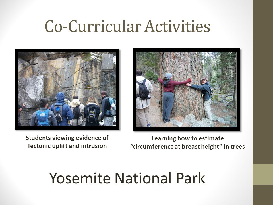 Co-Curricular Activities Students viewing evidence of Tectonic uplift and intrusion Learning how to estimate circumference at breast height in trees Yosemite National Park