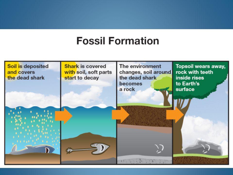 Sequence 1: Uplift & Erosion 1.Limestone deposited 2.