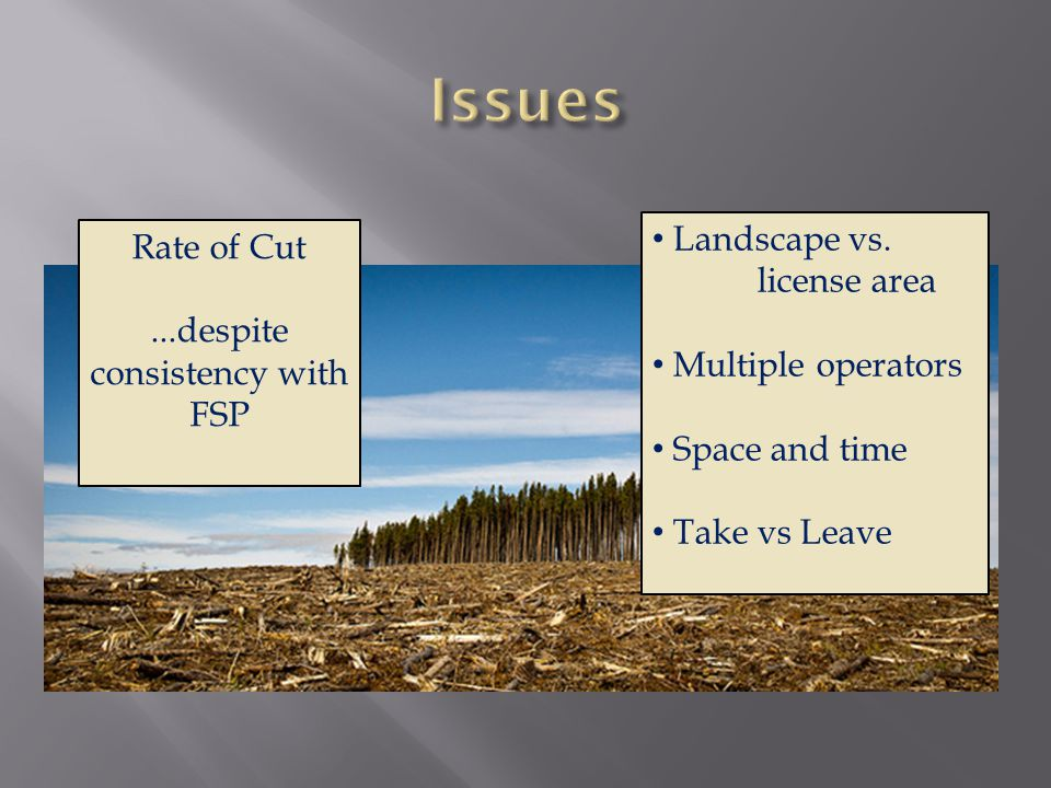 Rate of Cut...despite consistency with FSP Landscape vs.