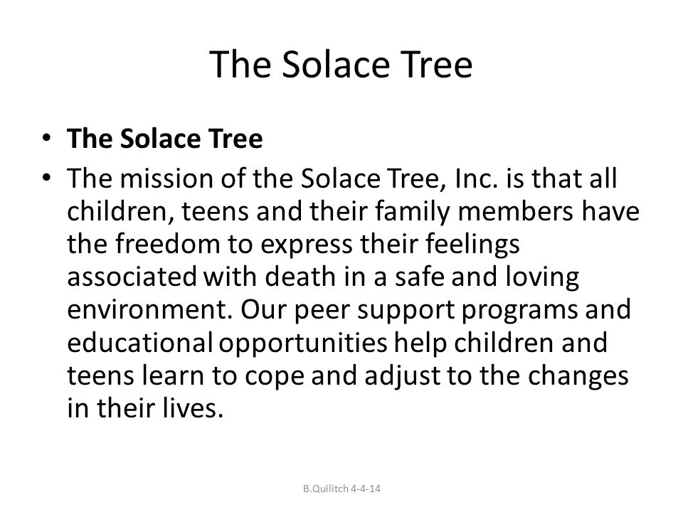 The Solace Tree The mission of the Solace Tree, Inc.