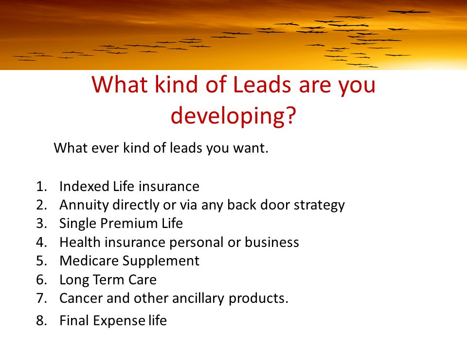 What kind of Leads are you developing. What ever kind of leads you want.