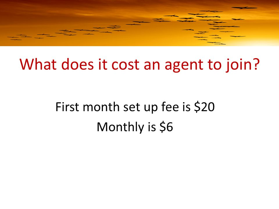 What does it cost an agent to join First month set up fee is $20 Monthly is $6