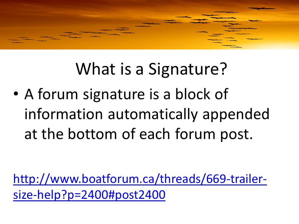 What is a Signature.