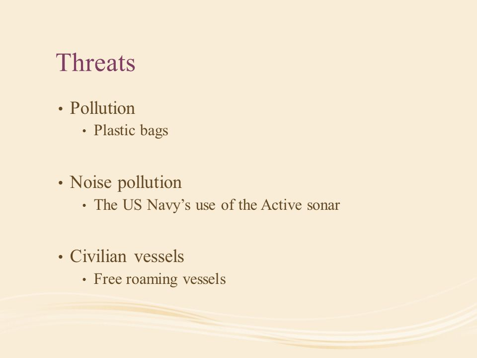 Threats Pollution Plastic bags Noise pollution The US Navy's use of the Active sonar Civilian vessels Free roaming vessels