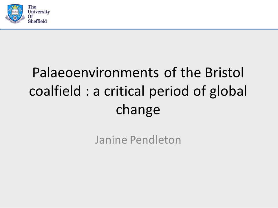Palaeoenvironments of the Bristol coalfield : a critical period of global change Janine Pendleton