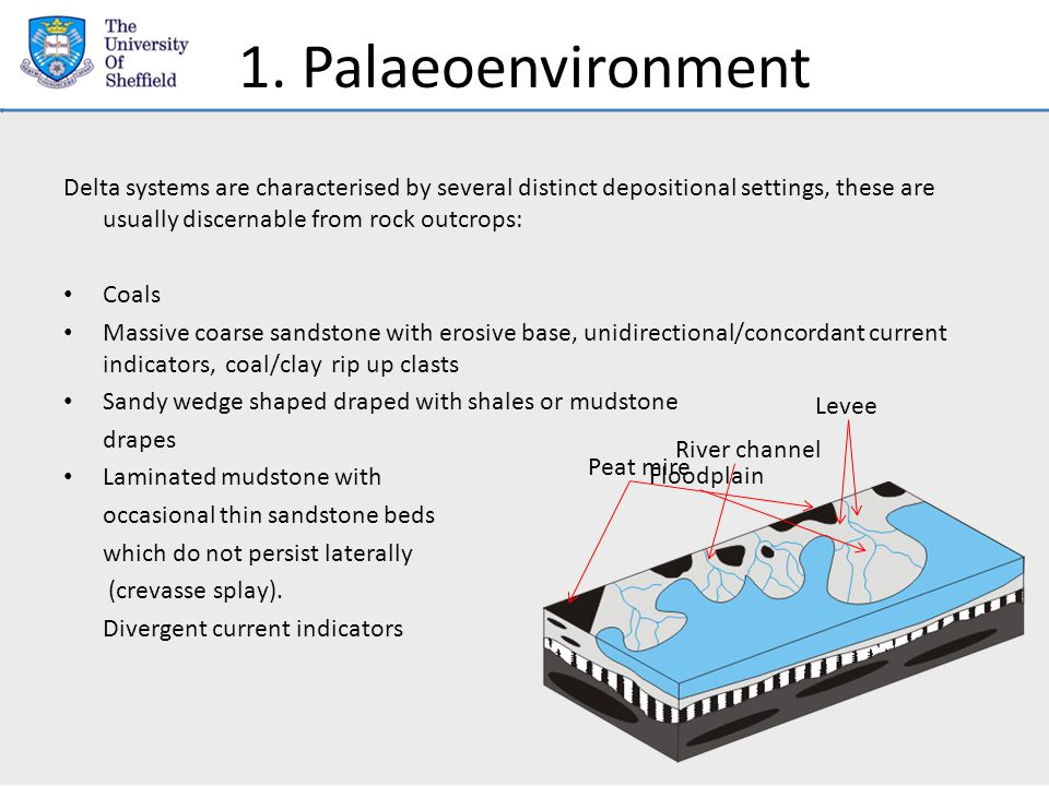 1. Palaeoenvironment Delta systems are characterised by several distinct depositional settings, these are usually discernable from rock outcrops: Coal