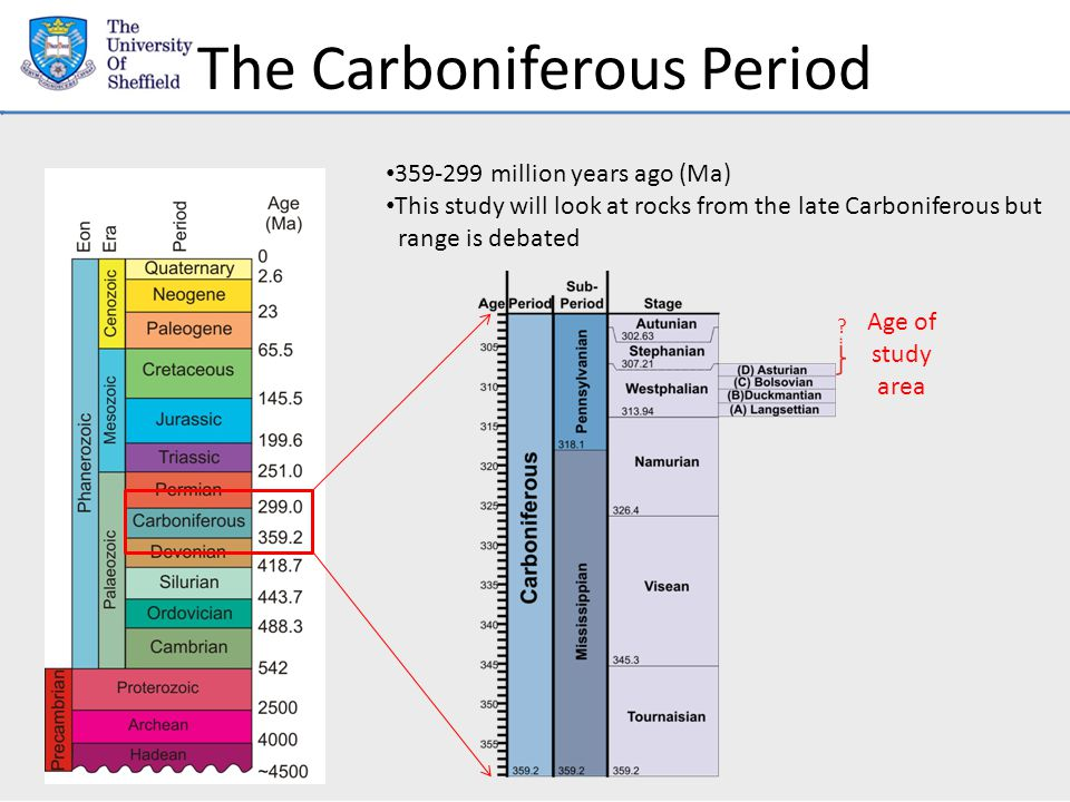 The Carboniferous Period 359-299 million years ago (Ma) This study will look at rocks from the late Carboniferous but range is debated Age of study area