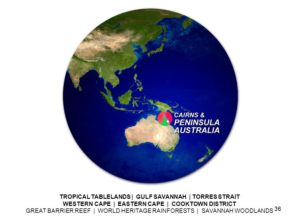 TROPICAL TABLELANDS | GULF SAVANNAH | TORRES STRAIT WESTERN CAPE | EASTERN CAPE | COOKTOWN DISTRICT GREAT BARRIER REEF | WORLD HERITAGE RAINFORESTS | SAVANNAH WOODLANDS 36