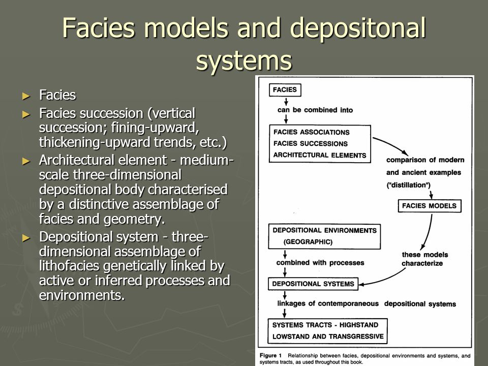 Facies models and depositonal systems ► Facies ► Facies succession (vertical succession; fining-upward, thickening-upward trends, etc.) ► Architectural element - medium- scale three-dimensional depositional body characterised by a distinctive assemblage of facies and geometry.