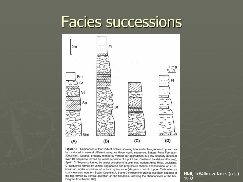 Facies successions Miall, in Walker & James (eds.) 1992