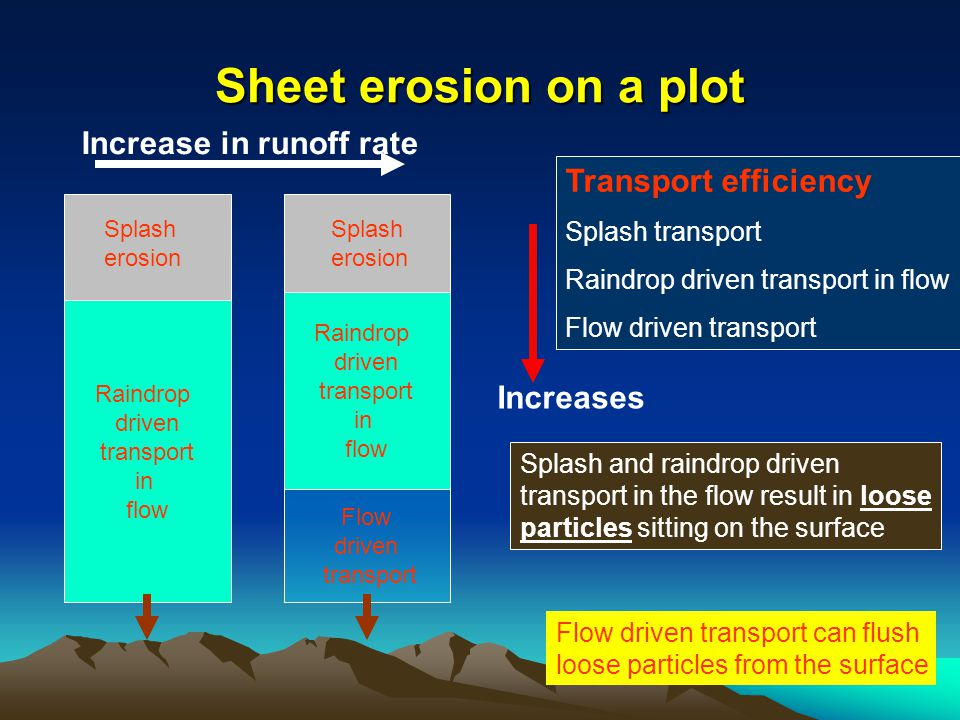 Sheet erosion on a plot Raindrop driven transport in flow Splash erosion Raindrop driven transport in flow Flow driven transport Transport efficiency Splash transport Raindrop driven transport in flow Flow driven transport Increases Splash and raindrop driven transport in the flow result in loose particles sitting on the surface Flow driven transport can flush loose particles from the surface Increase in runoff rate