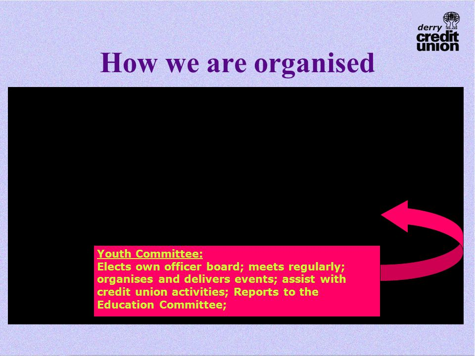 How we are organised Youth Committee: Elects own officer board; meets regularly; organises and delivers events; assist with credit union activities; Reports to the Education Committee;