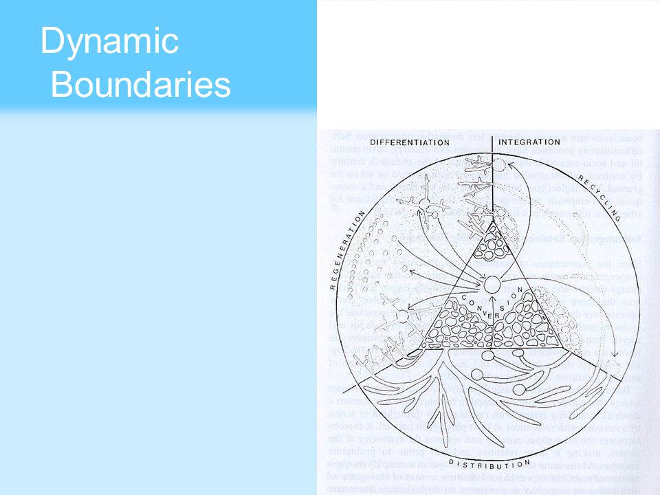 Dynamic Boundaries