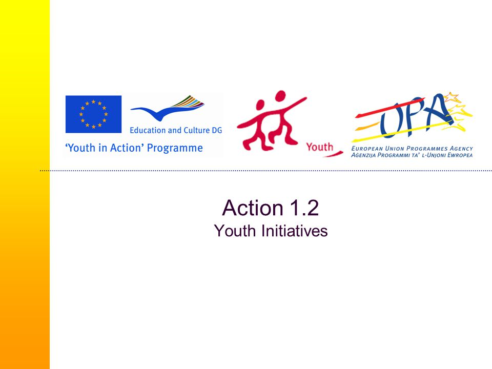 Action 1.2 Youth Initiatives