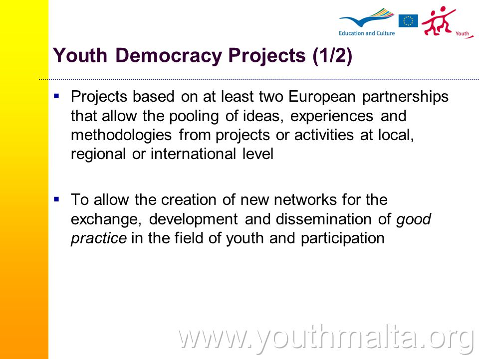 Youth Democracy Projects (1/2)  Projects based on at least two European partnerships that allow the pooling of ideas, experiences and methodologies from projects or activities at local, regional or international level  To allow the creation of new networks for the exchange, development and dissemination of good practice in the field of youth and participation