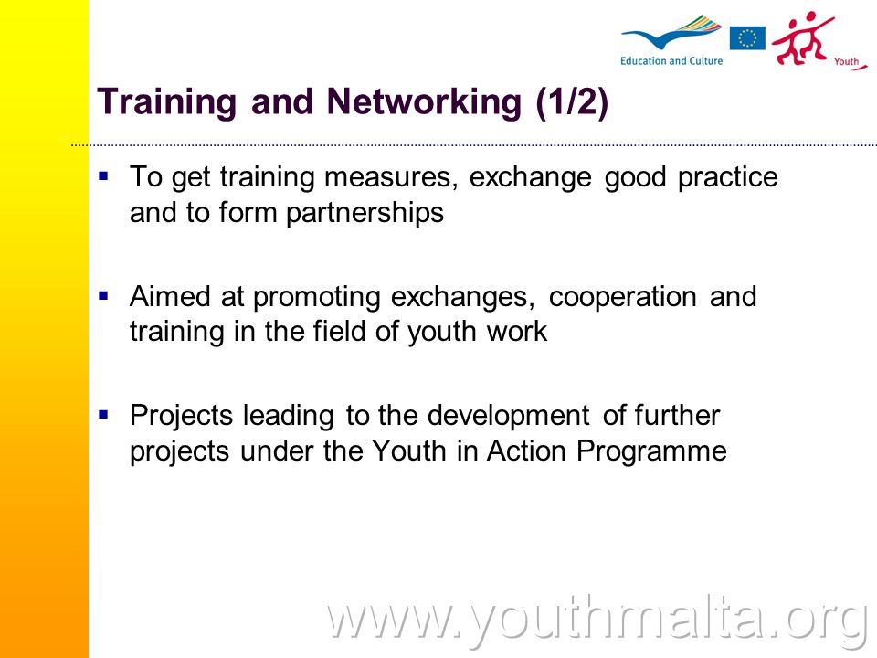 Training and Networking (1/2)  To get training measures, exchange good practice and to form partnerships  Aimed at promoting exchanges, cooperation and training in the field of youth work  Projects leading to the development of further projects under the Youth in Action Programme
