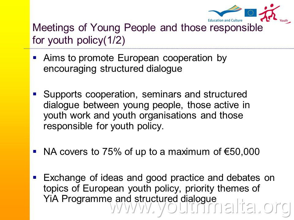 Meetings of Young People and those responsible for youth policy(1/2)  Aims to promote European cooperation by encouraging structured dialogue  Supports cooperation, seminars and structured dialogue between young people, those active in youth work and youth organisations and those responsible for youth policy.