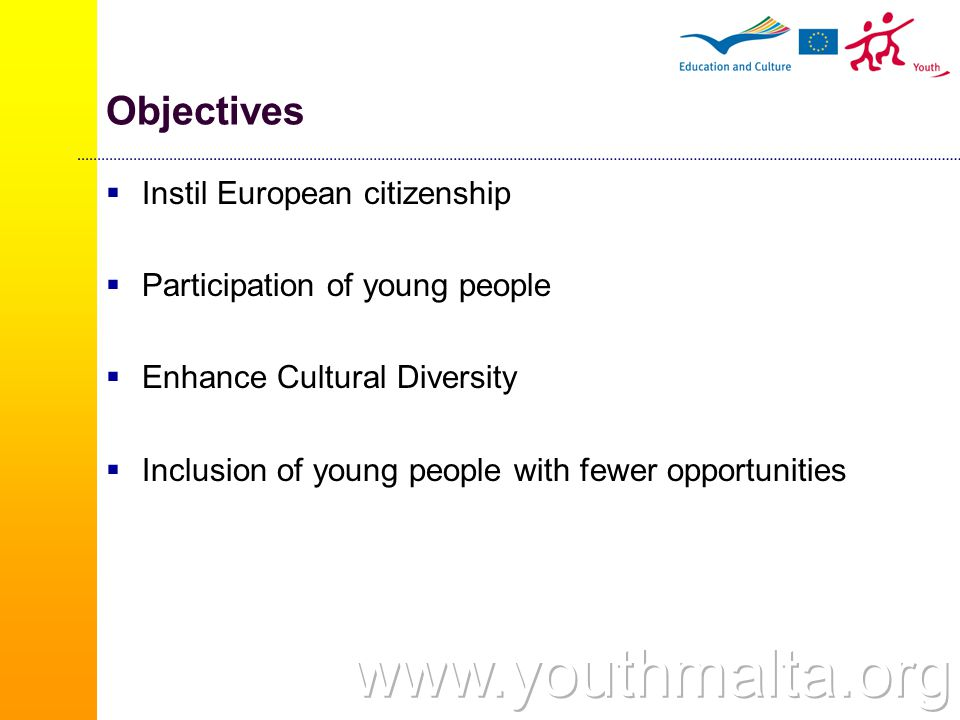 Youth Initiatives (2/2) National youth initiatives  projects developed by a single group in their country of residence Trans-national youth initiatives  projects realized in common by two or more groups from different countries