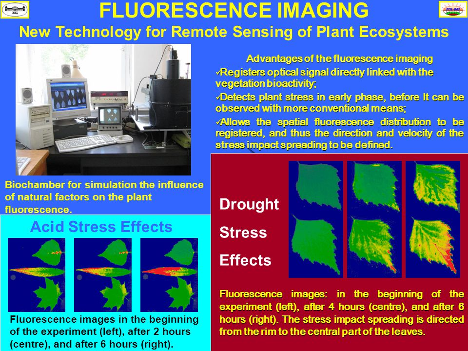 STIL-BAS Solar - Terrestrial Interactions September 6-10, 2005, Romania Biochamber for simulation the influence of natural factors on the plant fluorescence.