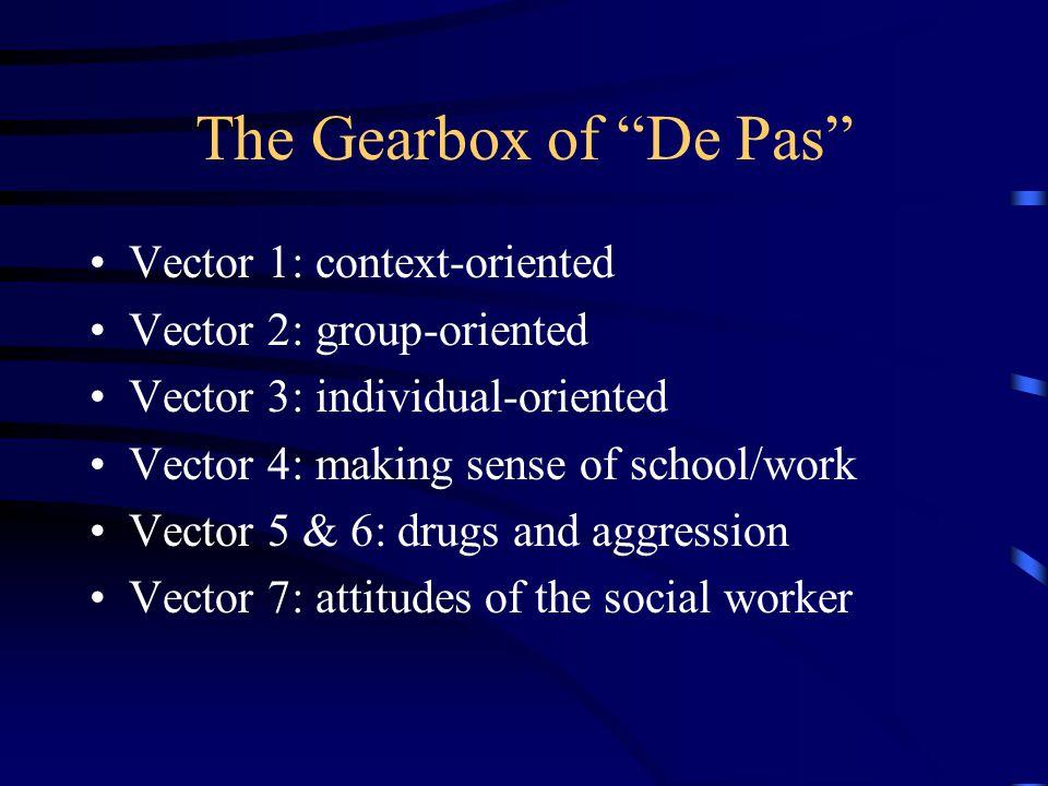 """The Gearbox of """"De Pas"""" Vector 1: context-oriented Vector 2: group-oriented Vector 3: individual-oriented Vector 4: making sense of school/work Vector"""