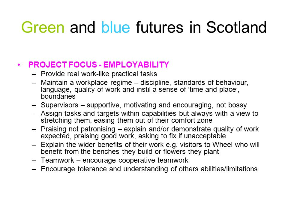 Green and blue futures in Scotland PROJECT FOCUS - EMPLOYABILITY –Provide real work-like practical tasks –Maintain a workplace regime – discipline, standards of behaviour, language, quality of work and instil a sense of 'time and place', boundaries –Supervisors – supportive, motivating and encouraging, not bossy –Assign tasks and targets within capabilities but always with a view to stretching them, easing them out of their comfort zone –Praising not patronising – explain and/or demonstrate quality of work expected, praising good work, asking to fix if unacceptable –Explain the wider benefits of their work e.g.