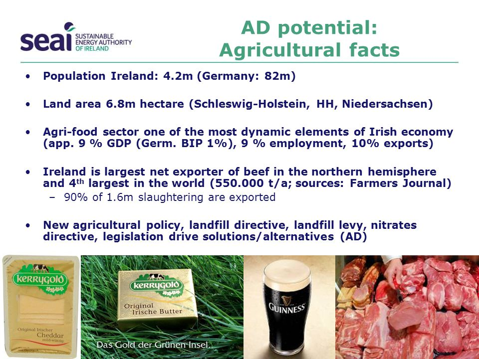 AD potential: Agricultural facts Population Ireland: 4.2m (Germany: 82m) Land area 6.8m hectare (Schleswig-Holstein, HH, Niedersachsen) Agri-food sect