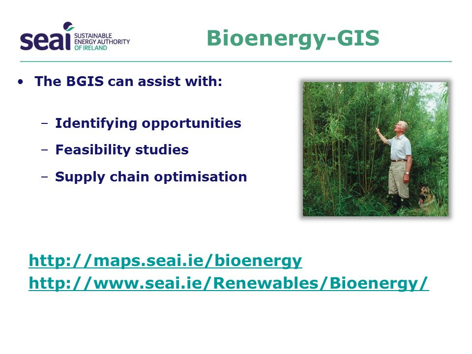The BGIS can assist with: –Identifying opportunities –Feasibility studies –Supply chain optimisation http://maps.seai.ie/bioenergy http://www.seai.ie/