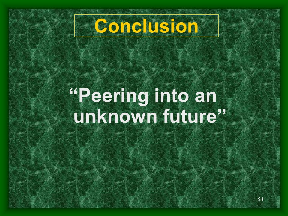 "54 Conclusion ""Peering into an unknown future"""