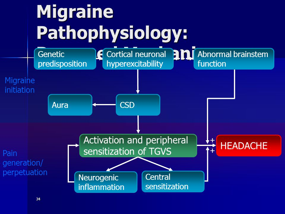 34 Migraine Pathophysiology: Proposed Mechanisms AuraCSD Cortical neuronal hyperexcitability Activation and peripheral sensitization of TGVS Neurogenic inflammation Central sensitization HEADACHE .