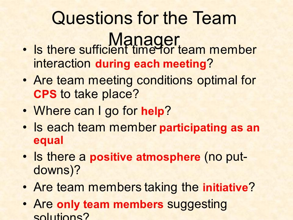 Questions for the Team Manager Is there sufficient time for team member interaction during each meeting .