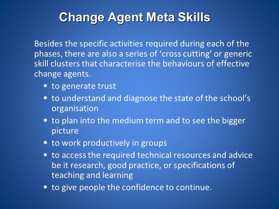 Change Agent Meta Skills Besides the specific activities required during each of the phases, there are also a series of 'cross cutting' or generic ski