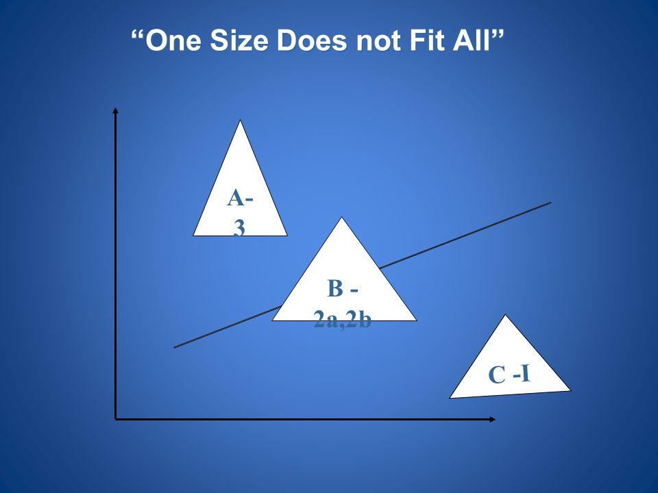 """""""One Size Does not Fit All"""" A- 3 C -I B - 2a,2b"""