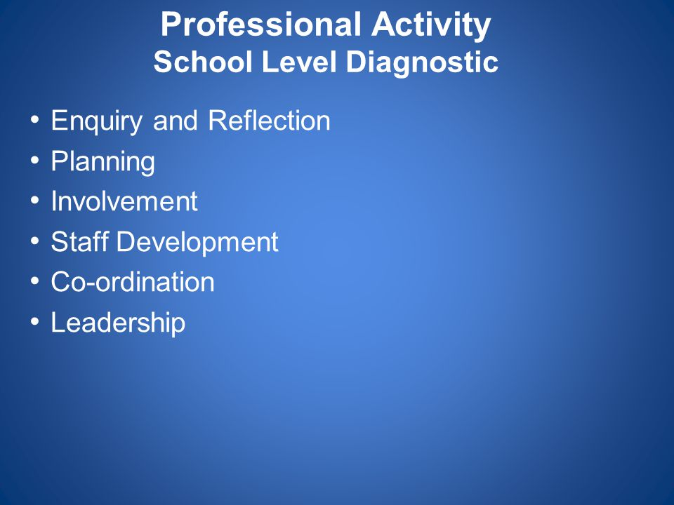 Professional Activity School Level Diagnostic Enquiry and Reflection Planning Involvement Staff Development Co-ordination Leadership