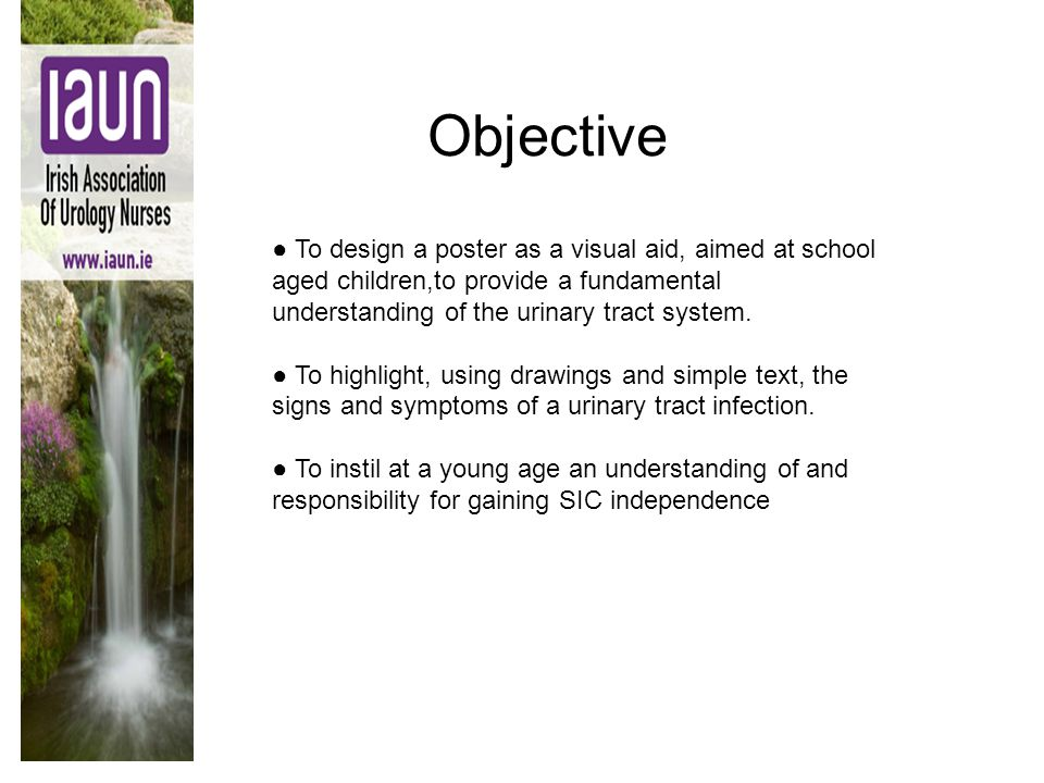Objective ● To design a poster as a visual aid, aimed at school aged children,to provide a fundamental understanding of the urinary tract system. ● To