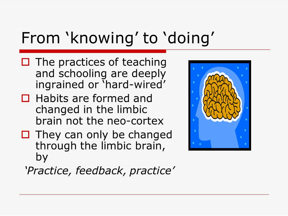 From 'knowing' to 'doing'  The practices of teaching and schooling are deeply ingrained or 'hard-wired'  Habits are formed and changed in the limbic