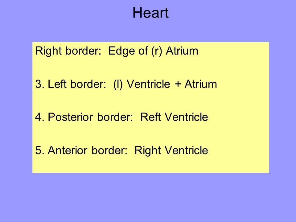 Heart Right border: Edge of (r) Atrium 3. Left border: (l) Ventricle + Atrium 4. Posterior border: Reft Ventricle 5. Anterior border: Right Ventricle