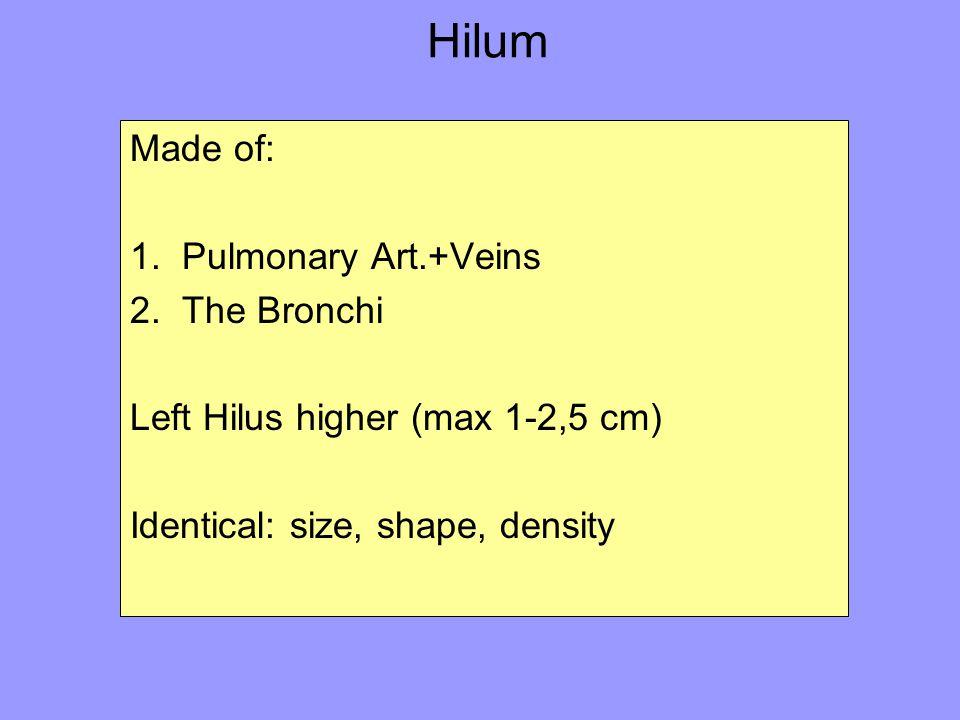 Hilum Made of: 1. Pulmonary Art.+Veins 2. The Bronchi Left Hilus higher (max 1-2,5 cm) Identical: size, shape, density