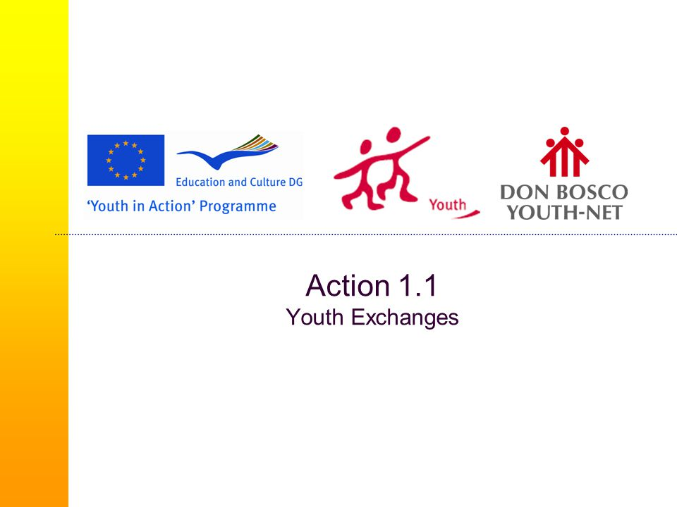 Youth Democracy Projects (2/3)  Involving young people aged between 13 and 30 with a minimum of 16 participants  Involving two promoters per participating country  Possible participation of decision-makers and experts regardless of their age or geographical provenance  The project may last from 3 to 18 months  Projects get 75% funding of eligible costs but not exceeding € 50 000  Thematic concept – YiA priorities, the future of Europe or the political priorities identified in the framework of European cooperation in the youth field.