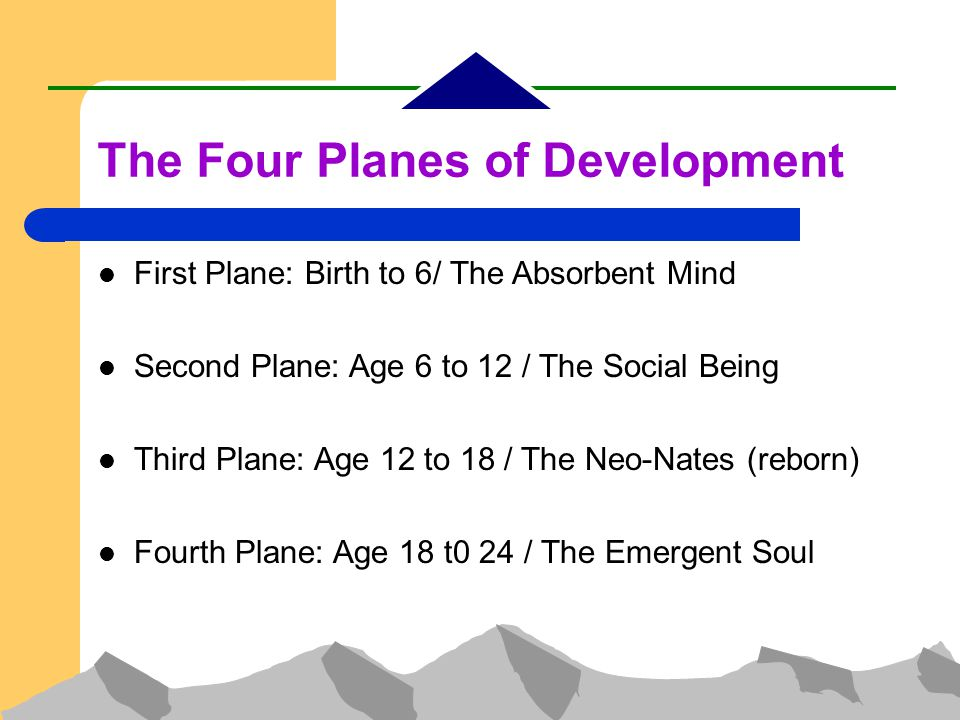 The Four Planes of Development First Plane: Birth to 6/ The Absorbent Mind Second Plane: Age 6 to 12 / The Social Being Third Plane: Age 12 to 18 / The Neo-Nates (reborn)‏ Fourth Plane: Age 18 t0 24 / The Emergent Soul