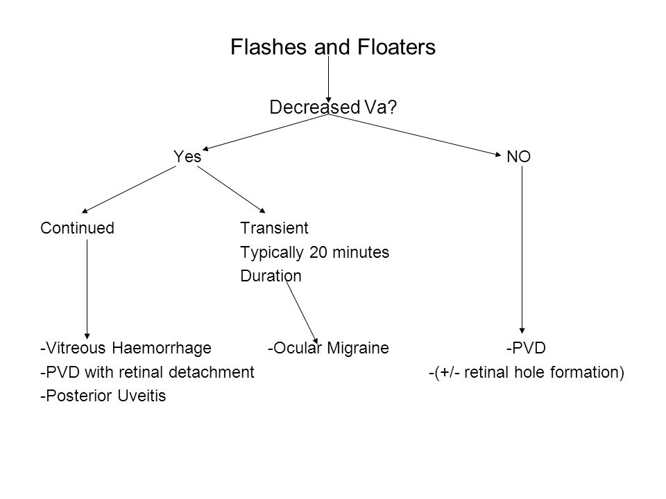 Flashes and Floaters Decreased Va? Yes NO ContinuedTransient Typically 20 minutes Duration -Vitreous Haemorrhage -Ocular Migraine-PVD -PVD with retina
