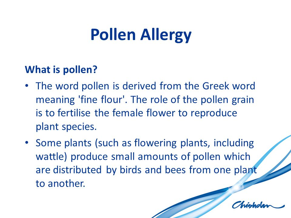 Pollen Allergy What is pollen? The word pollen is derived from the Greek word meaning 'fine flour'. The role of the pollen grain is to fertilise the f