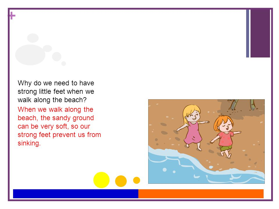 + Why do we need to have strong little feet when we walk along the beach.